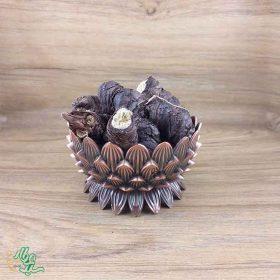 ریشه گیاه ایرسا (زنبق) سید عطار