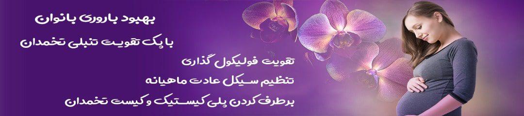 پک تقویت تنبلی تخمدان و باروری بانوان سید عطار